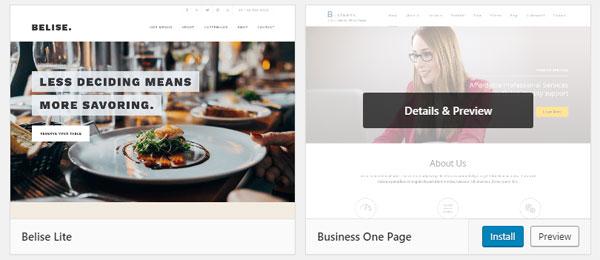 Previewing a WordPress theme.